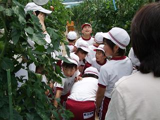 2009-06-12小学生見学