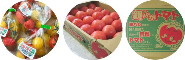 親バカトマトのショッピング