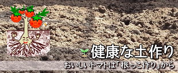 健康な土作り