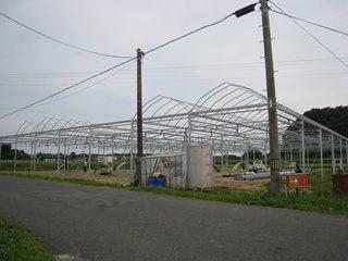 2009 173_R