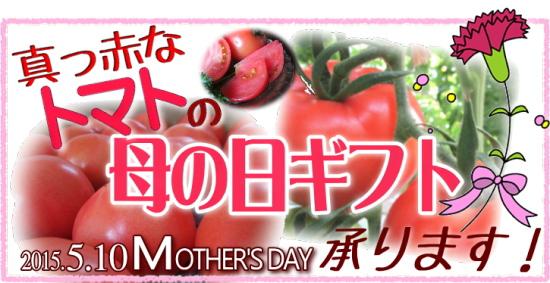母の日トマト