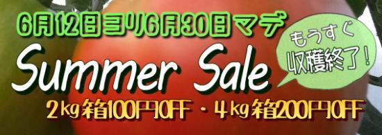 summer-sale2015