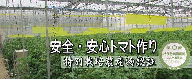 特別栽培農産物認証