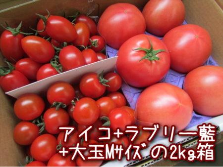 aiko-ai-m-2kg
