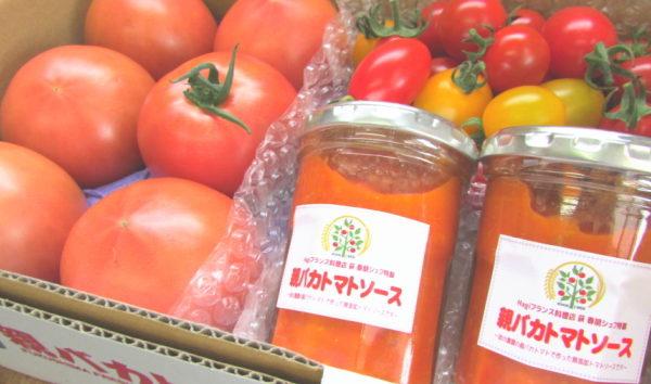 トマトソースの詰め合わせ